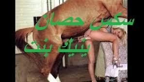 سكس حيوانات حصان يمارس جنس مع بنت محروم من نيك